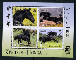 2013 - TONGA  - Mi. Nr. Block 49 - NH - ( **) - (K-EA-361369) - Tonga (1970-...)