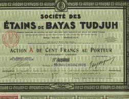 STE DES ETAINS DE BAYAS TUDJUH ( BORDEAUX ) - Azioni & Titoli