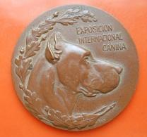 Medal - Exposicion Internacional Canina - Premio Al Merito 1918 - Spain