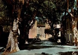 83-LA ROQUEBRUSSANNE..ROUTE DE LA STE-BAUME ..CPSM GRAND FORMAT - La Roquebrussanne