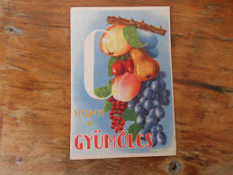 Vitamin A Gyumolcs  Garamvolgyi K Rajza - Publicité