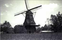 """NOORDSCHESCHUT Bij Hoogeveen (Drenthe) - Molen/moulin - Historische Opname Van De Verdwenen Molen """"De Korenbloem"""" (1940) - Hoogeveen"""