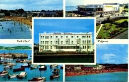 DEVON - PAIGNTON - PARK HOTEL Dv831 - Paignton