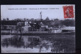CHATILLON COLIGNY - Chatillon Coligny