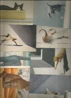 8 CART. GATTI GALLERY CARD 1985 - Cartoline
