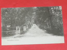 BERMUDA / BERMUDES    1902  SPRINGFIELD AVENUE   CIRC NON EDITION - Bermudes