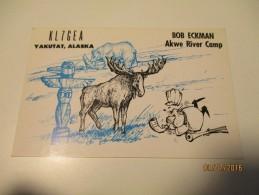 QSL CARD YAKUTAT  ALASKA ,  HUNTING , BEAR  , ELK , O - Amateurfunk