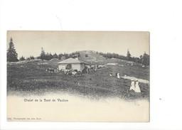 14971 - Chalet De La Dent De Vaulion - VD Vaud
