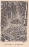 G , Cp , 02 , VILLERS-COTTERETS , La Forêt - Regard Des Sentines - Villers Cotterets