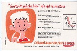 Juil16    75630     Buvard  L´aliment Du  Muscle C´est Le Sucre   Un  Macheur D'aliment - Sport