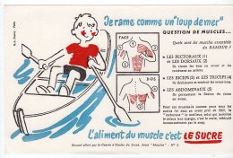 Juil16    75629     Buvard  L´aliment Du  Muscle C´est Le Sucre   Un Rameur - Sport