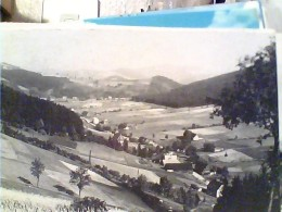 GERMANY -W-Dittersbach Mit Bärengrund   N1985   FN3417 - Schlesien