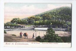 CPA TURQUIE - CONSTANTINOPLE - SALUT DE - Iles Des Princes - Vue De Dias Kédos à Prinkipo ANIMATION - Turquie