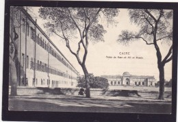 Old Post Card Of Caire,Cairo, Cairo, Egypt.,N47. - Cairo