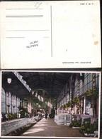 144797,Karlsbad Sprudel - Postcards