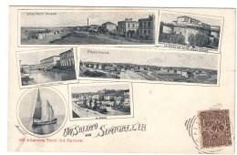Un Saluto Da Senigallia Affrancata Inizi Secolo COD.C.1916 - Senigallia