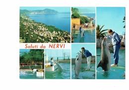 Cpsm - Saluti Da NERVI - Italie - Multivues - Dauphin Spectacle Animation - Dauphins