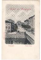 Saluti Da Senigallia Porta Fano Non Viaggiata COD.C.1917 - Senigallia