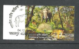 INDIA, 2015, FIRST DAY CANCELLED,  Centenary Of Zoological Survey Of India, (Rs 25 Stamp) Elephant, Tiger, Deer,1 V - India