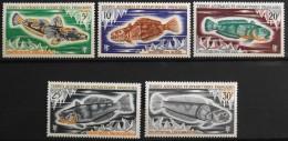 TAAF 1971 -  Du N° 34 à 38  - 5 Timbres NEUFS** - Parfait Etat - - Terre Australi E Antartiche Francesi (TAAF)