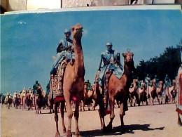 NIGERIA TUAREG CAMMELLI  JAHI AT KANO  V1964   FN3446 - Nigeria