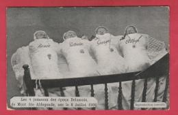 Mont-Sainte-Aldegonde - Les Quadruplés Des époux Delassois, Nés Le 8 Juillet 1906 ( Voir Verso ) - Morlanwelz