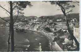 Sanary-sur-Mer-La Gorguette-(CPSM) - Sanary-sur-Mer