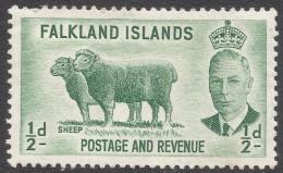 Falkland Islands. 1952 KGVI. ½d MH. SG 172 - Falkland Islands