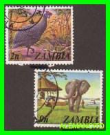 ZAMBIA ( AFRICA ) 2 SELLOS  FAUNA - Zambia (1965-...)