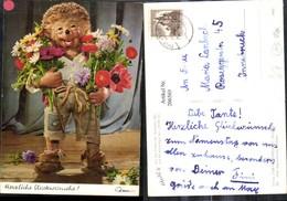 """206569,Mecki Igel 302 """"Herzliche Glückwünsche"""" Blumensträuße Blumen - Mecki"""