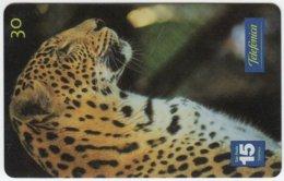 BRASIL C-642 Magnetic Telefonica - Animal, Cat, Leopard - Used - Brésil