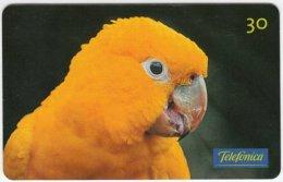 BRASIL C-652 Magnetic Telefonica - Animal, Bird, Parrot - Used - Brésil