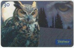 BRASIL C-655 Magnetic Telefonica - Animal, Bird, Owl - Used - Brésil