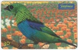 BRASIL C-659 Magnetic Telefonica - Animal, Bird - Used - Brésil