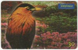 BRASIL C-660 Magnetic Telefonica - Animal, Bird - Used - Brésil