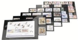 100 Cartes D´envoi à 3 Bandes Rhodoïd Et Rabat 148 X 105 Mm - Cartes De Classement