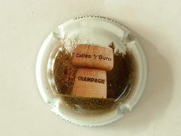 1. contour noir Capsule de champagne SERRIER Louis