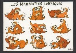 DF / HUMOUR COQUIN / LES MARMOTTES LUBRIQUES - Humour
