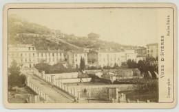 CDV 1870-80 Demay à Hyères. Jardins. - Photos