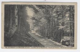 42 - St PRIEST LA PRUGNE  -  Les Bois De La Madeleine - Rte De Laprugne  / 1693 A - Roanne