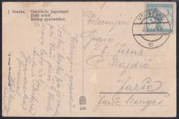 Slovenia,Chainbreakers, Carinthia, Picture Postcard, Cancellation Velikovec,  2.1. 1920 - Slowenien