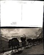 125735,Foto Ak Post Maultierpost N. Saas-Fee Esel Bergkulisse - Post & Briefboten