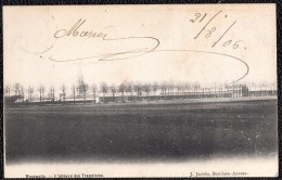 WESTMALLE  - MALLE - L'ABEILLE DES TRAPPISTES --- 1906 - Niet Courant ! - Malle