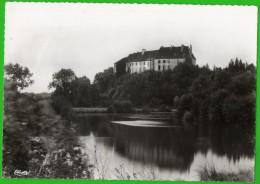 CPSM  RUFFEY (Doubs)  Le Château   +++++++ - Autres Communes