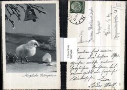 2005604,Ostern Küken M. Eierschale Glocke Palmzweige - Ansichtskarten