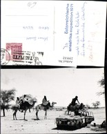 239532,Afrika Kamele Wüste Auto - Ansichtskarten