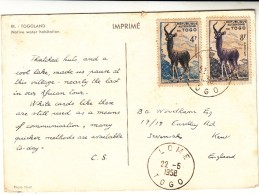 Togo / Animals / Postcards - Togo (1960-...)