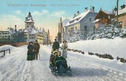 AT SEMMERING / Winterbild Hotel Erzherzog Johann / - Semmering