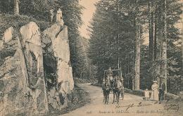 Route De LA BRESSE - Roche Des Bas Rupts - Xonrupt Longemer