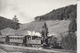 Biberbrugg - Einsiedeln  E 3/3 Mit Personenzug  /  Train à Vaeur - Dampfeisenbahn - SZ Schwyz
